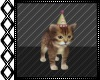 Sabrina Party Kitty 2P