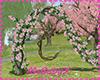 [1V4] Rose swing