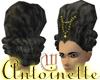 Antoinette -Black Velvet