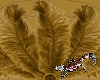 Tenni Gold Feather fans