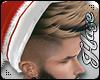 [IH] Santa 2Tone V1