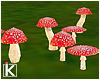 |K 🍃 Tea Time Fungi
