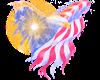 U.S.A Eagle Flag