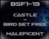 Castle - Bird Set Free