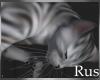 Rus Cleo The Cat
