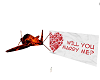 Plane and Marry Me Sign