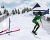 Winter Ski Slope & Cabin