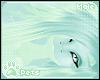 [Pets] Gem | hair v6