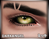 [ミ] Darkangel Eyes