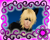 Chat Noir Hair