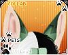 [Pets] Frankie   ears v1