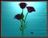 Purple Animated Roses
