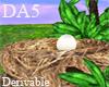 (A) Bird\'s Nest