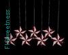 FLS Hanging Stars I