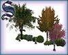 [S]Tree&Bush group