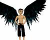 black/blue wings
