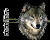 *Chee: Wolf Divider