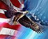 Flag & Eagle sticker