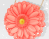 n| Flower Purse Coral