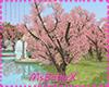 [1V4] Cherry tree PINK