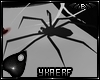 Lilith's Pet Spider