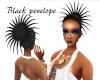 Black Hot Penelope