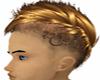 Blond Gay Hair