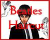Beatles Haircut
