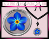 .pd Forget Me Not