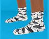 Shark Socks flat 2 (F)