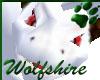 Wolfshire White Drake