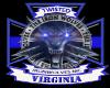 twi Virginia banner