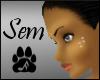 AC Basic skin Sem