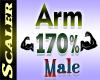 Arm Resizer 170%