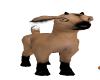 my baby goat /Bambi