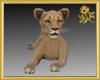 Cub Pet
