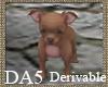 (A) Chihuahua Puppy