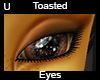 Toasted Eyes