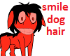 smile dog's hair