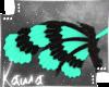| Kishi | Wings 2
