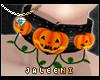 ! Pumpkin Collar