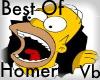 Best Of Homer Voicebox!