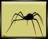 Dp Spider