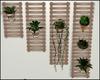Spring Plant Shelves