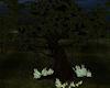 Enchanted Tree1