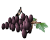 Giant Grapes with Poses