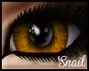 -Sn- Unisex LOrange Eyes