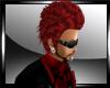 WB Red Franz (M)