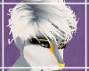 Kulta | [M] Hair 2
