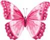 *ENYO* Nose Bfly: Pink